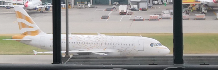 BA aircraft in gold livery