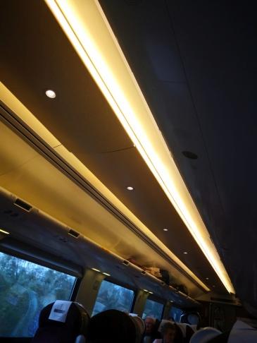 normal light